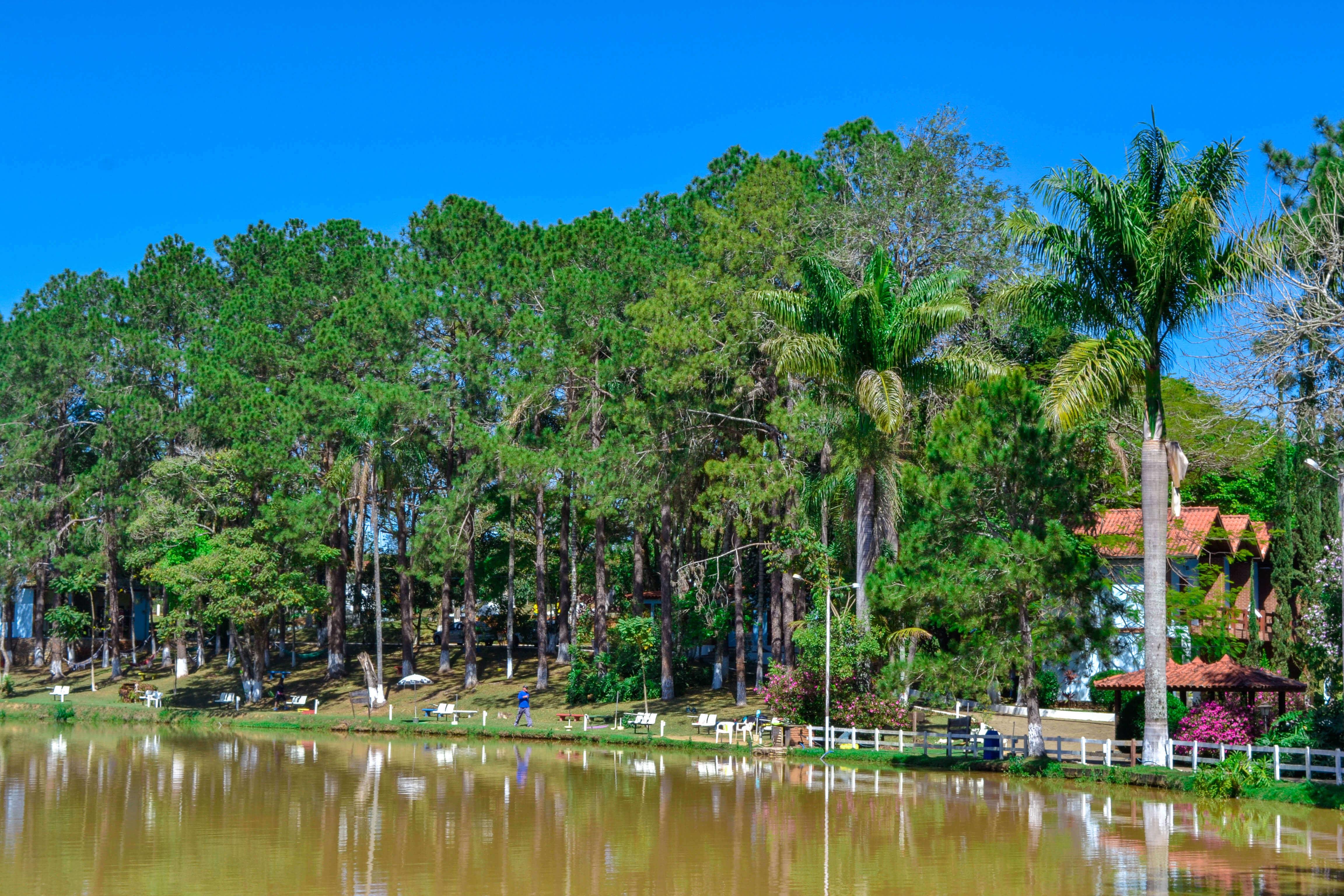 Conheça o turismo rural de um hotel fazenda em Socorro SP