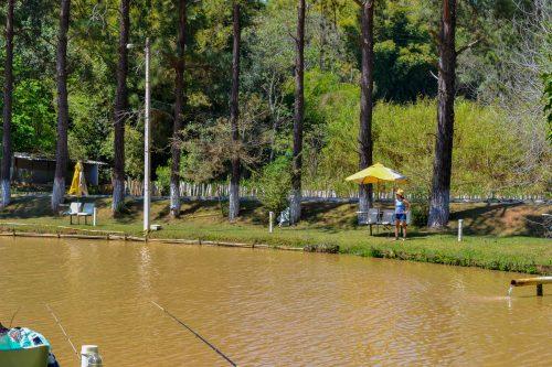 Pesca esportivas em Socorro SP - lago com peixes grandes